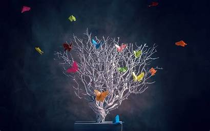 Creative Colorful Butterfly Tree Wallpapers