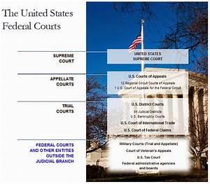 Federal Court Structure Chart Gates Ap Government Politics