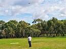 Help Shape the Adelaide Parklands - Adelaide