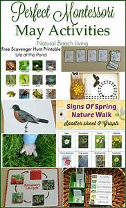 163 best images about Kids' Spring Activities on Pinterest ...