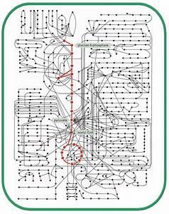 4  Metabolic Network Of The E  Coli  Nodes Represent