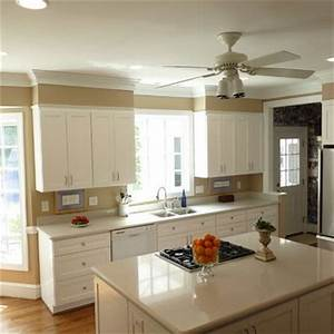 kitchen soffit kitchens and decor on pinterest With kitchen colors with white cabinets with animal head wall art