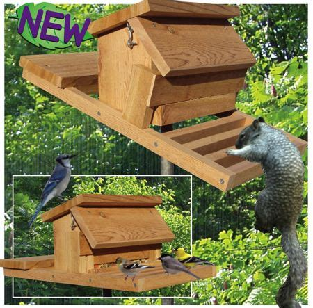 homemade squirrel proof bird feeder plans feedingnature com