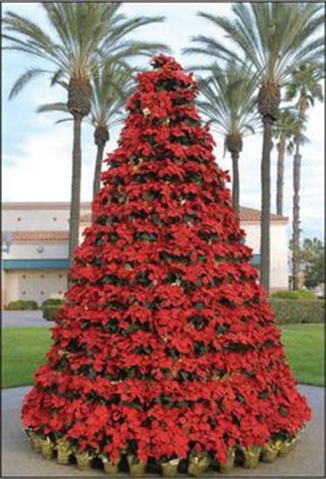 images  christmas diy trees  pinterest