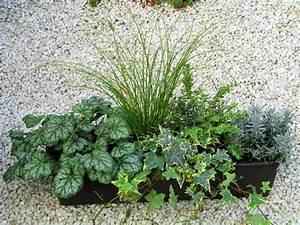Balkonpflanzen Herbst Winter : die 25 besten ideen zu balkonk sten bepflanzen auf pinterest balkonpflanzen winter outdoor ~ Sanjose-hotels-ca.com Haus und Dekorationen