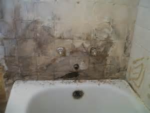 Cleaning Mold From Shower by Veteran Ed S Your Renovation Experts What Mold Can Do To