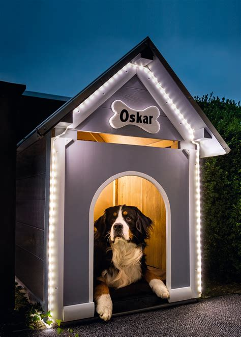 Hundehütte Für Die Wohnung by Hundeh 252 Tte F 252 R Innen Fkh