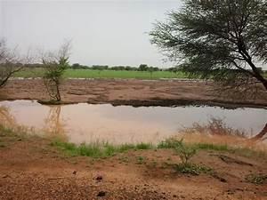 Multitudes killed in renewed Mali communal clashes   CAJ ...