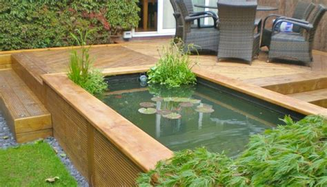 raised ponds google search garden pinterest raised