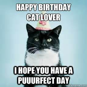 cat lover meme happy birthday cat lover i you a puuurfect day