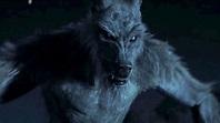 9 Best Werewolf Movies You Should Not Miss - Latest Gazette