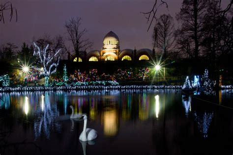 pnc festival of lights cincinnati zoo lights