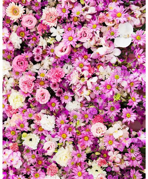 pink flowers photography backdrops  baby shower wedding