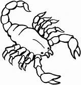 Coloring Scorpion Printable Preschool Animals Painting sketch template