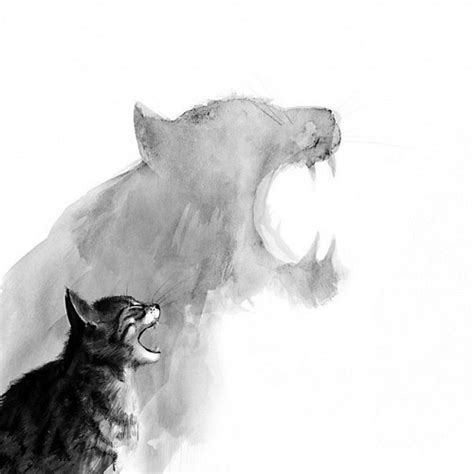 cat drawing art animals black  white cool white cats