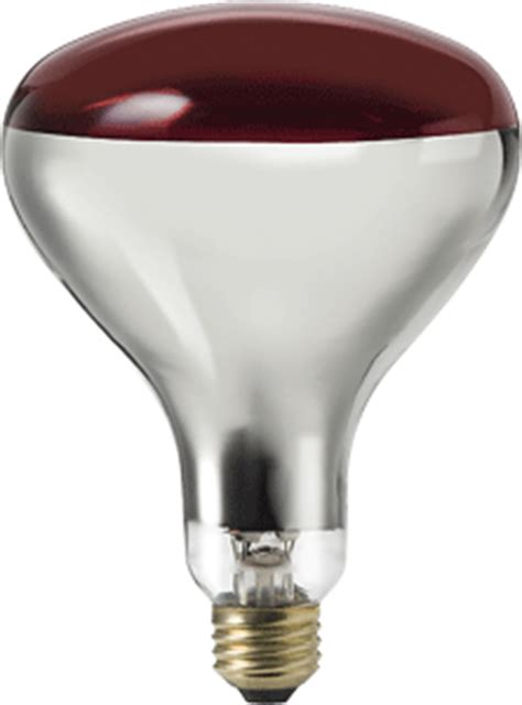 image gallery infrared light bulbs