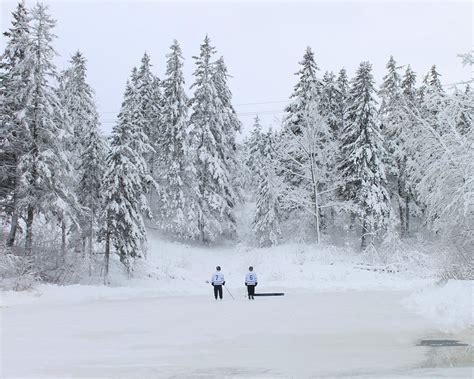birthplace of hockey scotia