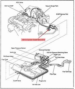 We Have A 2001 Lexus Es300 That The Check Engine Light Comes On  The Codes Are P0440 Evap