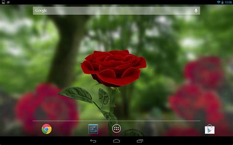rose  wallpaper  android apps games
