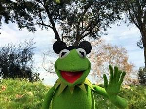 73 best images about Kermit on Pinterest | The muppets ...