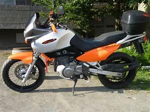 Suzuki Freewind 650 : 1998 suzuki xf 650 freewind picture 1713843 ~ Dode.kayakingforconservation.com Idées de Décoration