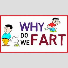Why Do We Fart Youtube