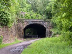 eastern portal   railway tunnel   trevor