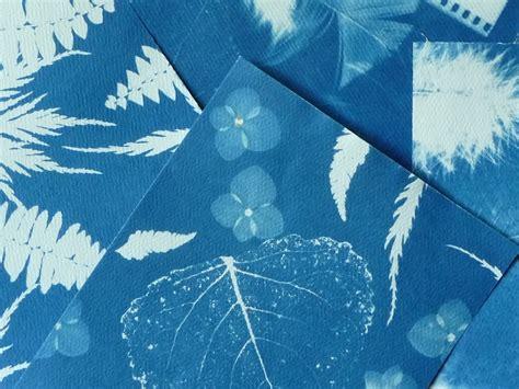 sun prints cyanotype prints artclubblog