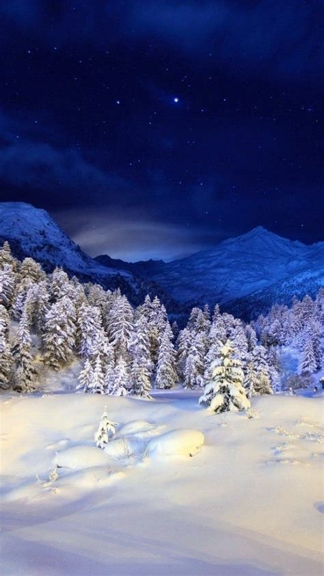 winter snow forest  android smartphone wallpaper