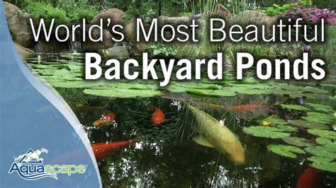 worlds  beautiful backyard ponds youtube