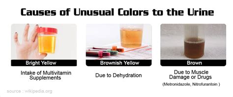 phenazopyridine urine color what does the color and odor of your urine say your health