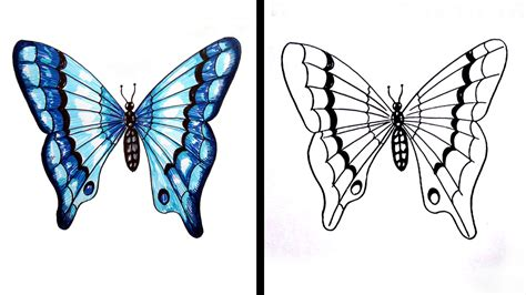 How To Draw A Butterfly Easy Step By Step / Drawing For