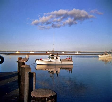 How To Fish For Cod From A Boat by Cape Cod Fishing Boat Chatham Massachusetts Cape Cod