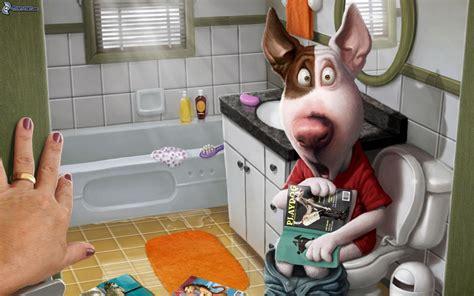 le cochon dans la toilette