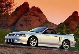 2001 Roush Stage 3 Mustang | Roush mustang, 2001 ford mustang, Mustang