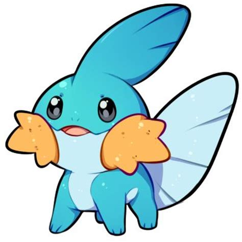 25 best ideas about mudkip on regions