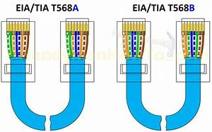 Port Ethernet Switch Wiring Diagram