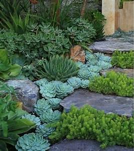 les 153 meilleures images du tableau rocaille garden sur With amenagement petit jardin exotique 1 amenager une rocaille exotique coloree et fleurie
