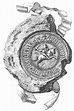 File:Seal of Sigismund Kęstutaitis.png - Wikimedia Commons