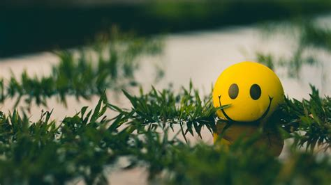 Wallpaper ball, smile, smiley, grass, water hd, picture, image