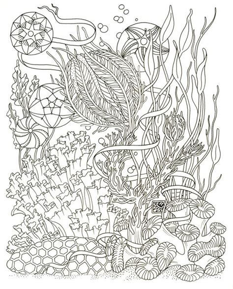 75 best free colouring pages sea theme images on