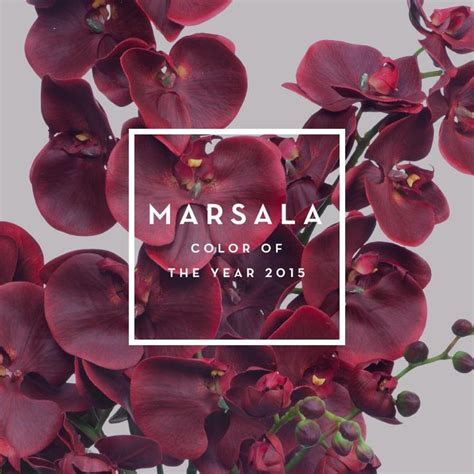 pantone 2015 color of the year marsala pantone color of the year 2015