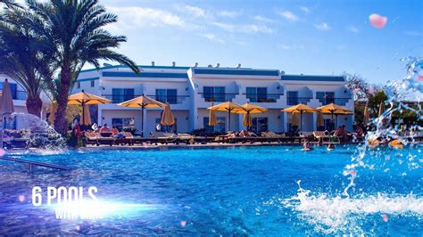 Best Resort In Sharm El Sheikh Sultan Gardens Resort The Best Hotel In Sharm El Sheikh