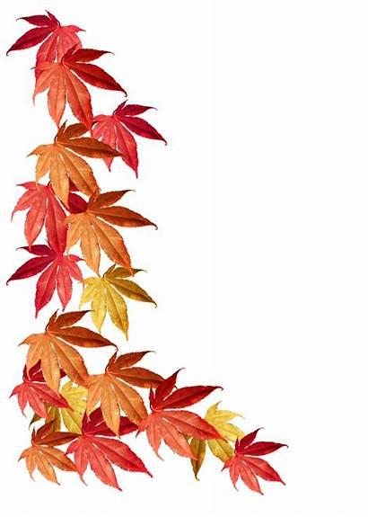 Leaves Autumn Borders Clipart Border Leaf Transparent