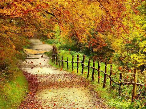 Beautiful Autumn Landscapes Wallpapers by Fall Scenery Tag Beautiful Autumn Scenery Wallpapers