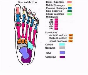 The Foot Diagrams