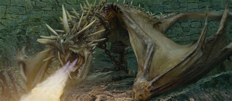 Harry Faces The Hungarian Horntail Dragon; Harry Potter