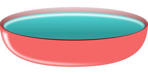 bowl pink water  vector graphic  pixabay