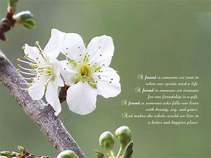 Heart Touching Friendship Poems | SK Friendz Club