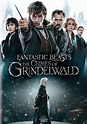 Fantastic Beasts: The Crimes of Grindelwald [DVD] [2018 ...